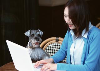 スマホの副業ブログライターも在宅で稼ぎやすく安全な仕事ですよ!